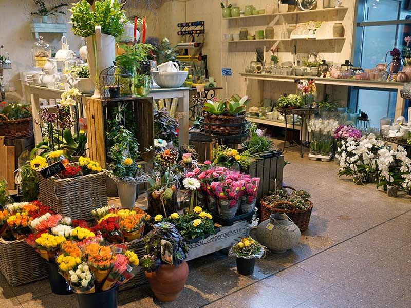 Blumen und Dekoration von EDEKA Meyer